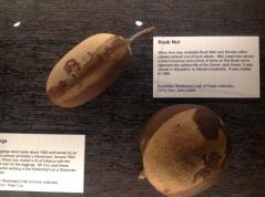 Boabab vruchten