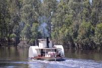 Kleine raderboor op de Murray river