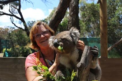 Nog één keertje Koala knuffelen