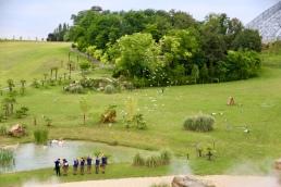 Vogelshow Zoo de Beauval, einde