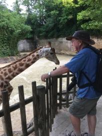Frans bij de giraffen