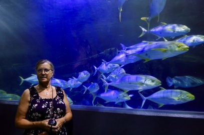 Margareth in het Melbourne Aquarium