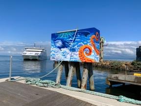 De veerboot bij Queenscliff