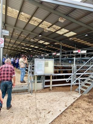 Frans bij de ingang van de Cattle Market