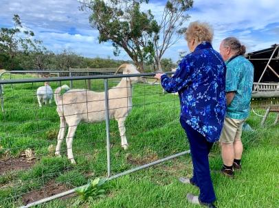 Anne en Frans bij de geiten van Anne