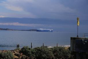 Grote boor komt de Port Phillip Bay binnen vanaf de Bass Strait