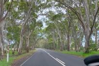 Onderweg in de buurt van Bairnsdale
